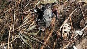 """صور.. العثور على جثة طفل متحللة في """"زبالة ترعة"""" بقنا"""