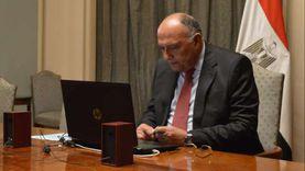 شكري يؤكد حق الدول النامية في النفاذ للمصل المضاد لكورونا