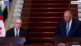 وزير خارجية الجزائر: كل ملفات المنطقة شرقا وغربا تتطلب التنسيق مع مصر