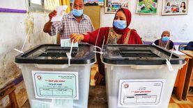 الإبراشي يشيد بمشاركة السيدات في انتخابات الشيوخ: في الصدارة