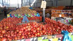 أسعار الخضروات والفاكهة اليوم بالإسماعيلية: الخيار ينخفض جنيه