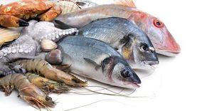 انخفاض أسعار الدواجن وارتفاع الأسماك بأسواق الدقهلية اليوم