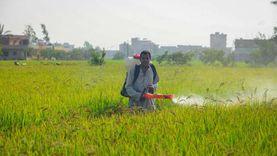 """""""شريف أيوب"""": حجم غش المبيدات في مصر 27% من السلع المغشوشة"""