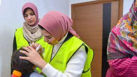 «الأورمان»: وزعنا الآلاف من كراتين المواد الغذائية بالمنيا خلال رمضان