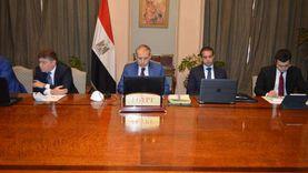 مصر تبحث مع 3 دول عربية تطورات الأزمة السورية