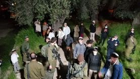 المستوطنون يواصلون انتهاكاتهم في حي «الشيخ جراح» المقدسي