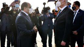 السيسي: الرئيس التونسي ثمن جهود مصر لحل أزمة سد إثيوبيا