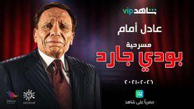 20 معلومة عن «بودي جارد».. أطول المسرحيات عرضا في الوطن العربي