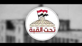 """كيف سهلت مؤسسات الدولة انتخابات """"الشيوخ"""" على المصريين بالخارج؟"""
