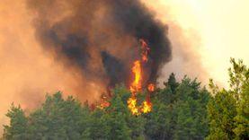 لليوم الثالث.. استمرار محاولات السيطرة على حرائق الغابات في لبنان