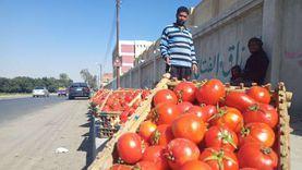 أسعار الخضر والفاكهة في الإسماعيلية اليوم: ارتفاع الطماطم