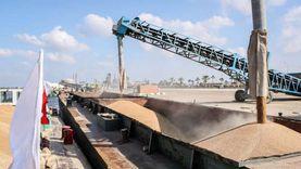 تحميل 2548 طن قمح بميناء دمياط إلى صوامع إمبابة