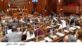 وكيل الشيوخ عن افتتاح «سايلو فودز»: مولد مصر جديدة تشرق شمسها على العالم