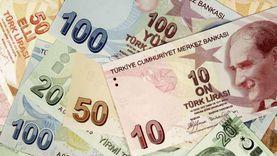 تقلبات في أسواق الصرف التركية.. ونائب: صهر أردوغان باع النقد الأجنبي