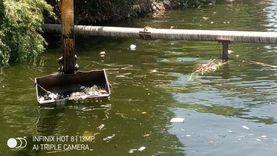 قانون تنظيم إدارة المخلفات: حظر الإلقاء بالمجاري المائية.. وعقوبات تصل للحبس والغرامة