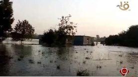 أهالي بالمنوفية: ارتفاع منسوب النيل دمر المحاصيل