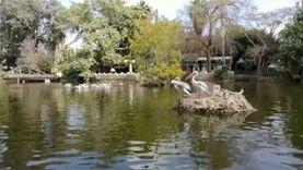احتفال حديقة الحيوان باليوم العالمي للحياة البرية