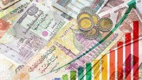 الأرقام تؤكد.. دخول وتوسع الكيانات البنكية في مصر خلال الفترة الحالية «رهان رابح»