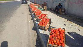 الطماطم والبطاطس ترفع أسعار الخضروات.. والفواكة مستقرة