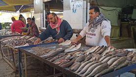 سمك الغلابة.. أسعار سوق الجمعة بالإسماعيلية تواجه الركود (فيديو)
