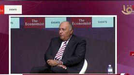 شكري: التصريحات التركية الأخيرة بشأن مصر متناقضة ومدعاة للتعجب