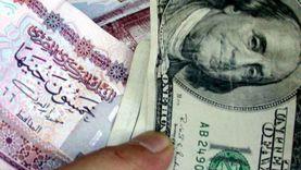 استقرار سعر الدولار أمام الجنيه مع بداية التعاملات الصباحية