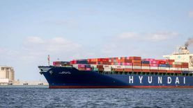10257 طن رصيد القمح في مخازن القطاع الخاص بميناء دمياط