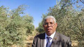 عضو برلماني بجنوب سيناء يطالب وزير الزراعة بتقنين أوضاع المزارعين