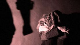 أستاذ قانون جنائي يكشف العقوبات المتوقعة على الطالب المتهم بالتحرش