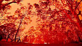 رجال الإطفاء يعجزون عن وقف زحف الحرائق في كاليفورنيا