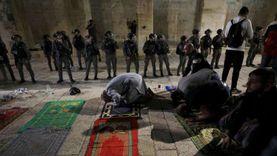 انتهاكات الاحتلال متواصلة.. اعتقالات واقتحام للأقصى واستهداف لأشجار الزيتون
