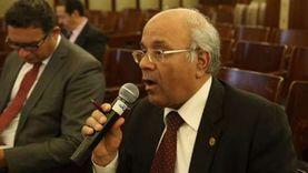 """""""محلية النواب"""": مصر بها 100 ألف كشك و8400 نصبة وفرشة"""