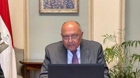 شكري: مصر ترفض ممارسات إسرائيل الغاشمة في القدس