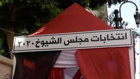 """""""المصرية لحقوق الإنسان"""": مرشحو النور روجوا لأنفسهم أمام لجان بالفيوم"""