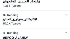 هاشتاج مرشدكوا قطة ورئيسنا أسد يحتل قائمة التريند على تويتر