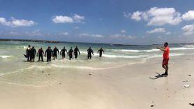 صورة على جوجل تكشف السر وراء زيادة أعداد ضحايا شاطئ النخيل