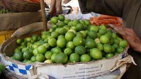 هل يصل سعر الليمون إلى 100 جنيه؟.. مسؤول يجيب
