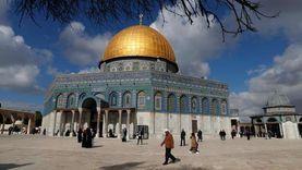مصر تؤكد رفضها ربط الأعمال الإرهابية بالإسلام