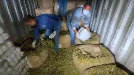 حبس مسجل خطر استورد مخدرات بـ20 مليون جنيه عبر البريد الجوي