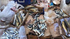 ضبط 180 كيلو أسماك ودواجن فاسدة في دمياط