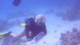 سانيا تسير على خطى إيفانا.. سائحات الغردقة يحتفلن بالغطس تحت الماء
