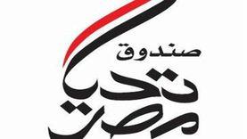 """6 وزارات تحتفل برقم قياسي جديد لـ""""تحيا مصر"""" في جينيس غدا"""