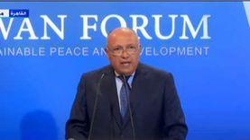 الخارجية: فلسطين لا تزال قضية العرب الأولى رسميا وشعبيا