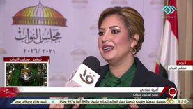 نائبة: ثورة 25 يناير الوحيدة التي نجحت بالعالم العربي