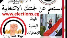 """""""تعليم وسط الإسكندرية"""" يقدم للناخبين خدمة الاستعلام عن مقر لجانهم"""