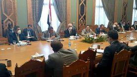 """لجنة """"العلاقات المصرية الأفريقية"""" تجتمع لمناقشة عودة النشاط الاقتصادي"""