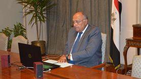 شكري يجدد مساندة مصر لجهود اللجنة الدستورية بسوريا