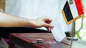نظام إلكتروني للقضاة وتصويت بريدي.. انتخابات مجلس الشيوخ: جديد في جديد
