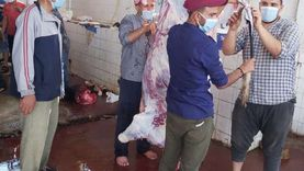 ذبح 287 أضحية بمجازر الشرقية