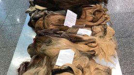 الجمارك تحبط محاولة تهريب 100 باروكة شعر طبيعي ومستلزماتها